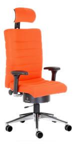 pending b rost hle mit multidimensionaler sitztechnologie. Black Bedroom Furniture Sets. Home Design Ideas